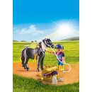 PLAYMOBIL® 6970 Groomer with Star Pony - S&H FREE
